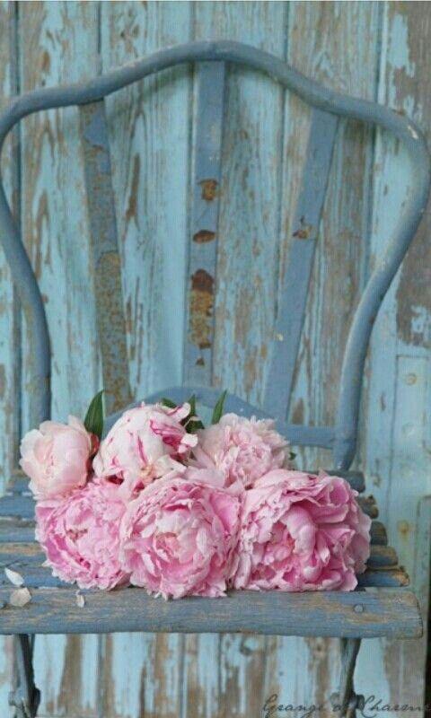 peonías rosas en silla azul, ramos de novia